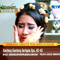 Kumpulan Foto Ganteng-Ganteng Serigala Episode 42-43 [SCTV] Part 1