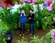 FotoThea dan Galang Ganteng-Ganteng Serigala Episode 71-1