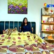 Foto Jessica Mila Ganteng-Ganteng Serigala Episode 74