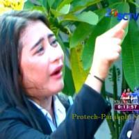Kumpulan Foto Ganteng-Ganteng Serigala Episode 127 [SCTV] Digo: Kita Akhiri Semua Ini Sisi..!!