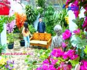 Foto Mesra Jessica Mila dan Kevin Julio GGS Episode 136