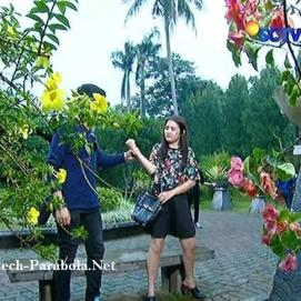 Aliando dan Prilly GGS Episode 269-1