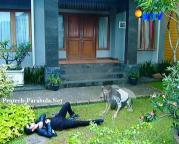 Aliando dan Prilly GGS Episode 291-1