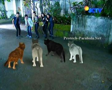 Pemain GGS Episode 288 Part 2-4