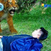Kumpulan Foto GGS Episode 408 [SCTV] Nayla Membatalkan Pernikahan | Digo Kembali di Rasuki Arwah Raja Drakula | Nayla Berhasil Membebaskan Sisi, Galang dan Jiro Dari Tawanan Vampir
