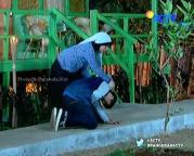 Anjani dan Pangeran Episode 47