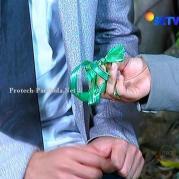 Pita Hijau dari Prilly GGS Returns Episode 39